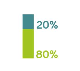 20%_80%-21
