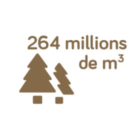 264millions-22