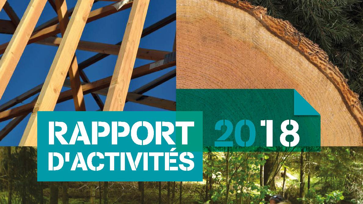 Pages de Rapport activite 2018
